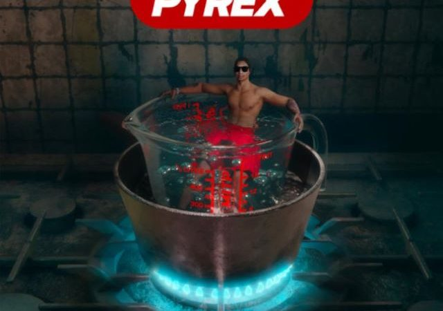 Digga D – Made In The Pyrex (Album)